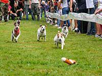 corsa dei cani baita prunno asiago
