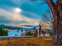 Escursione a cavallo invernale
