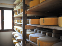 Käseformen hergestellt in Malga II Lotto Marcesina