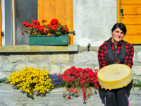 Asiago Dop and Flowers bei Malga II Lotto Marcesina