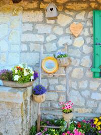 Asiago CHEESE DOP und Blumen bei Malga Larici unten