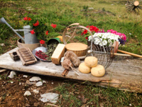 Käse und unterdrückt von Malga Larici di Sotto