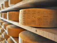 Asiago Dop Cheese Seasoning Warehouse