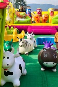Gonfiabili animali parco millepini portrait