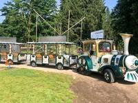Trenino freccia cimbra al parco millepini