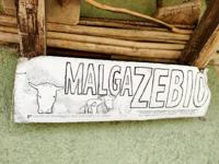 Verkauf von Bergprodukten von Malga Zebio