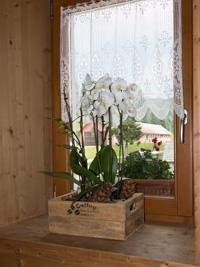 Spitzenvorhang und Blumenschmuck am Fenster