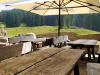 Holztische auf der Außenterrasse mit Blick auf den Wald