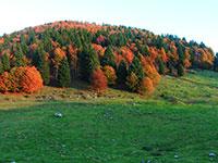 autunno in bocchetta pau