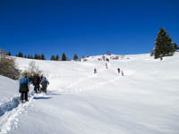 ciaspolata sulla neve