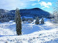 malga pau in veste invernale