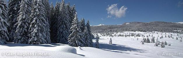The Snowy Marcesine Plain