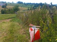 Asiago orienteering riferimento
