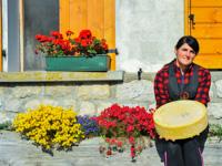 Asiago Dop and Flowers at Malga II Lotto Marcesina
