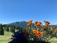 The view from Malga Larici di Sotto