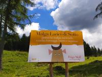 Malga Larici di Sotto, lunches in malga, snacks, cheese sales, butter and sopresse