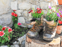 Decorative boots brings flowers