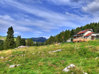 View from the meadows on Malga Larici di Sotto