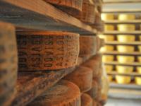 Asiago cheese DOP Seasoned Malga Granezza