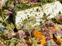Malga Serona's herb caciotta
