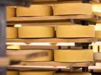 Asiago Dop cheese by Malga Verde