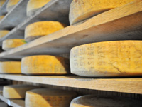 Asiago cheese DOP in aging