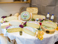 Selection of cheeses from the Dairy of the Altipians and Vezzena
