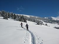 Ciaspolata tra la neve