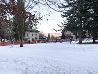 Princeton Park rink