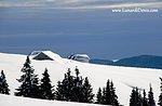 Monte Longara: Geführte Schneeschuh-Touren mit GUIDE Plateau-2 Januar 2016