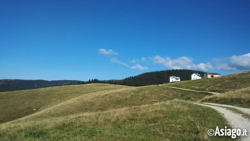 Monte ongara escursione guidata con guide altopiano 11 for Asiago dove dormire