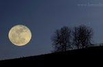 MONTE CORNO: Mondkalender Zauber-Ausflug mit GUIDE April 23-Nacht PLATEAU
