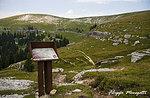 Escursione Guidata nei luoghi della Grande Guerra- Monte Fior-mercoledì 8 luglio