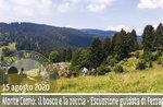 WELT CORNO: Der Wald und der Fels, Geführte Exkursion, 15. August 2020