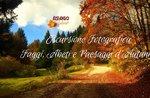FOTO ESAL, Buchen-, Tannen- und Herbstlandschaften 13/10/19