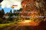 FOTOGRAFISCHER Ausflug, buchen, Tannen und Herbstliche Landschaften, 14. Oktober 2018