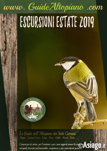 ESCURSIONI e TREKKING - Visite Guidate -  ESTATE 2019 - GUIDE ALTOPIANO Asiago7C