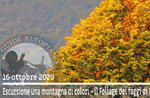 A COLORI MOUNTAIN, foza laub, geführte Exkursion, 16. Oktober 2020