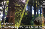 GREEN WALKING EMOTION: Emotionaler Wellnessausflug in die Wildnis, 18. Juli 2020