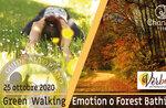 FOREST BATHING oder GREEN WALKING EMOTION: Emotionaler Spaziergang, 25. Oktober 2020