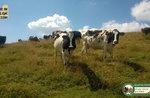 ANDAR PER eintauchen: Val Maron Ausflug mit GUIDE Plateau bis zum 27. AUGUST 2016