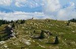 MONTE FIOR und MALGA: alte Palmer mit Plateau-August 3, 2016