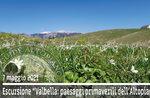 CIMA VALBELLA: Frühlingslandschaften des Plateaus, 7. Mai 2021
