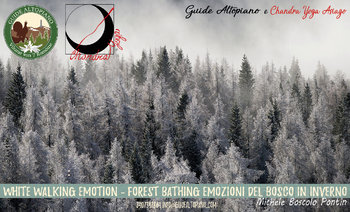 whitewalkingemotion forestbathing guide altopiano