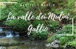 1° Maggio nach Mill Valley: Ausflug mit Snack