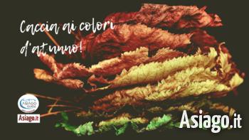 24 10 2021 asiago foliage caccia asiago guide