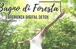 Wald-Bad-Digital Detox-Erfahrung