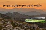 Emotionen in der Natur: Postkartensonnenuntergang - Samstag 3 August 2019