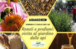 Ronzii e profumi: visita al giardino delle api - Domenica 7 luglio 2019