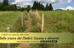 Auf den Spuren des Cimbri: Cesuna und Umgebung - Montag 15 Juli 2019